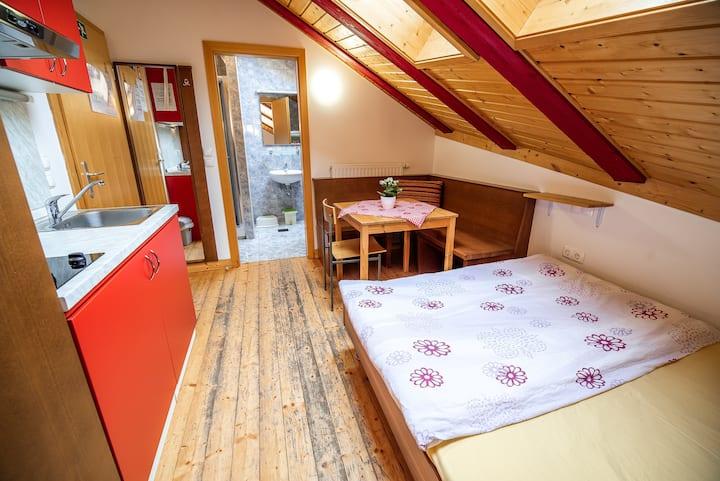Studio just by the ski slope in Kranjska Gora