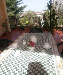 matrimoniale con terrazzo - โรม - ที่พักพร้อมอาหารเช้า