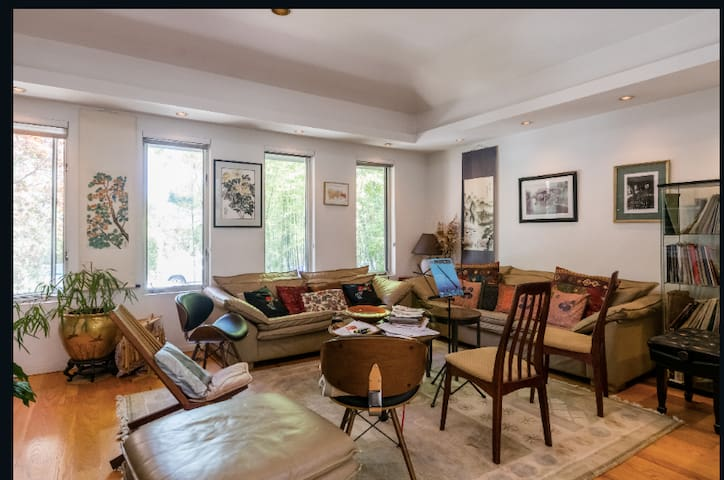 Living room - music room