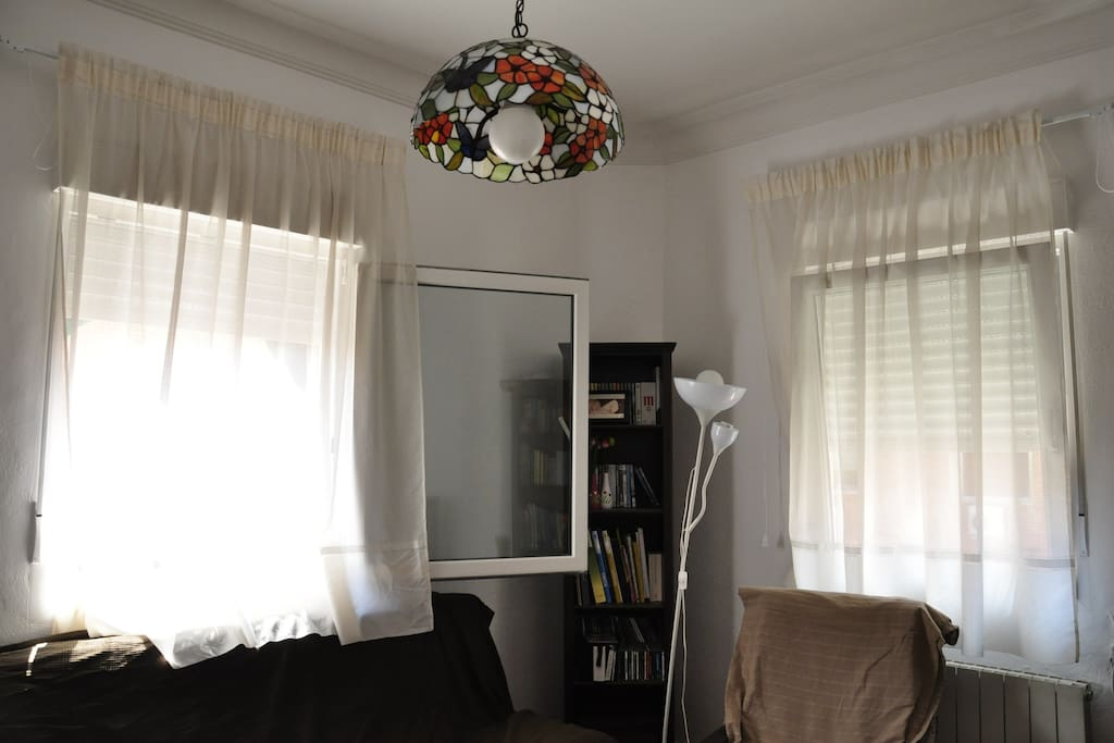 Lots of Light, Homey Atmosphere, WIFI, Near the Park, Big TV