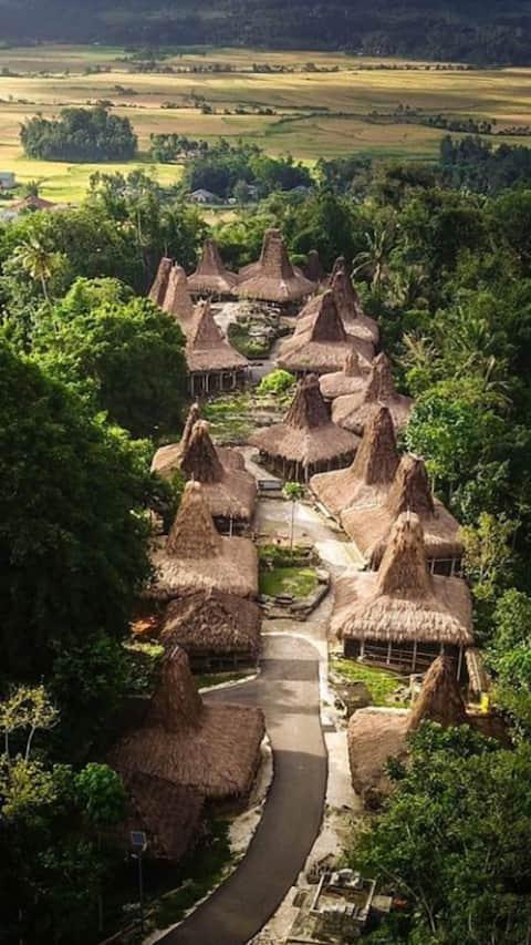 Enjoy the Unique of Sumba Ancient Village