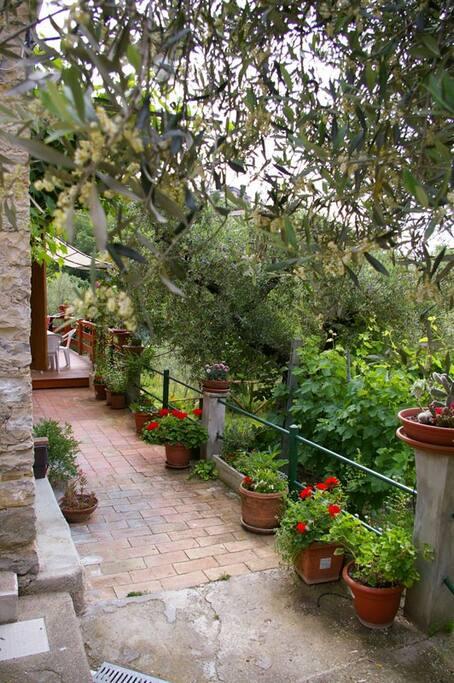 Terrazzo sul giardino di fronte casa