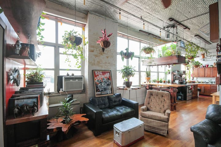 Bushwick Biodome Loft, Fun & Unique, Great View!