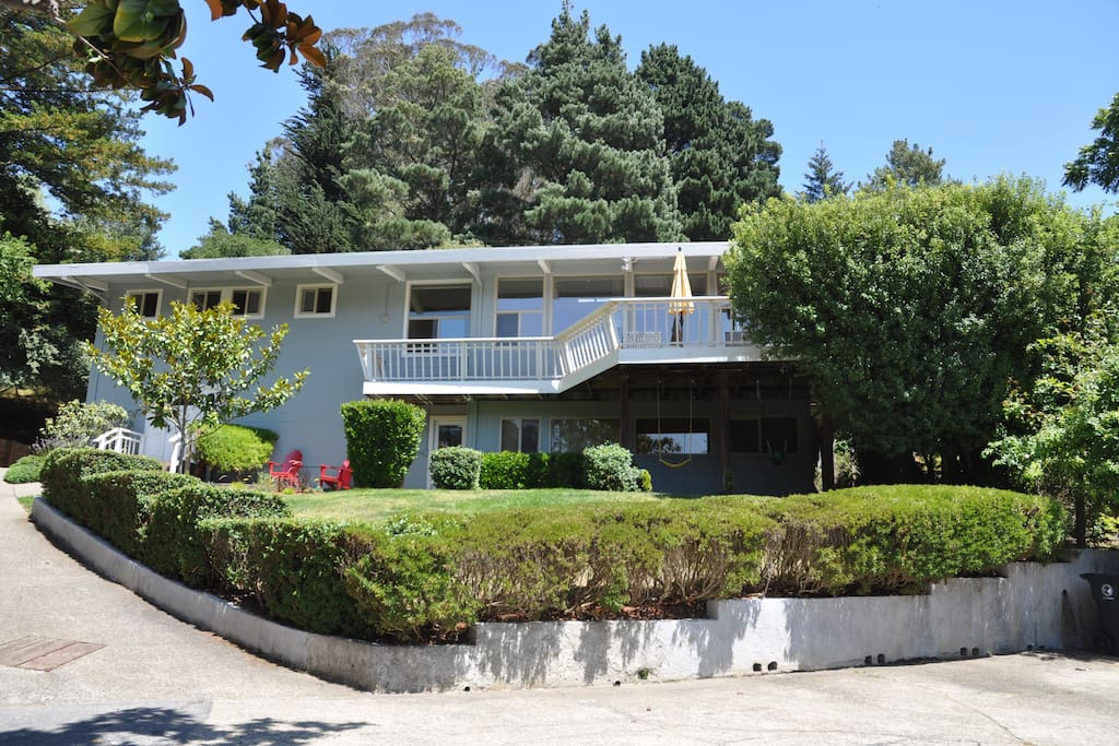 Mid century home in mill valley houses for rent in mill for Homes in mill valley ca