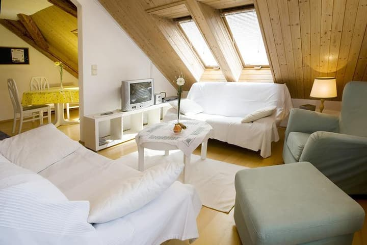 """Bright Holiday Apartment """"Ferienwohnung Bregenz 8 Top 4"""" in Central Location Close to Lake Constance with Wi-Fi, Terrace & Garden"""