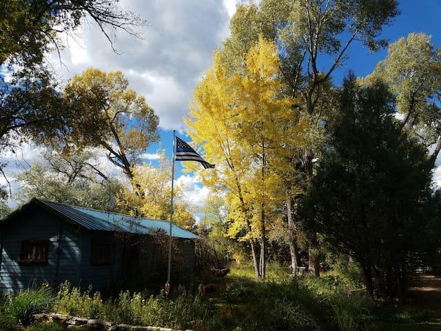 Chameleon, Rustic Cabin - Pecos