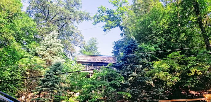 Cedar Lake Treehouse~ 50 minutes from NYC!