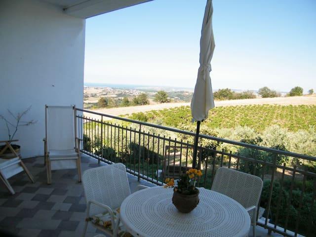 monolocale dolce civetta - Fresagrandinaria - Apartament