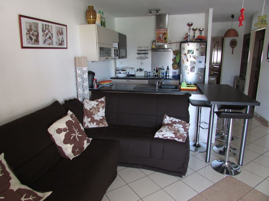 Salon et cuisine toute équipée avec canapé lit 160X200.