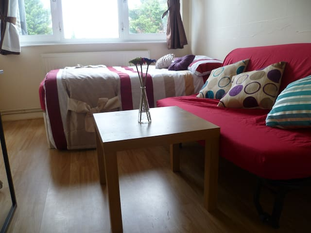 LONDON ORSSET ROOM, SLEEPS 2, CLOSE TO CITY. - Woodford - Daire