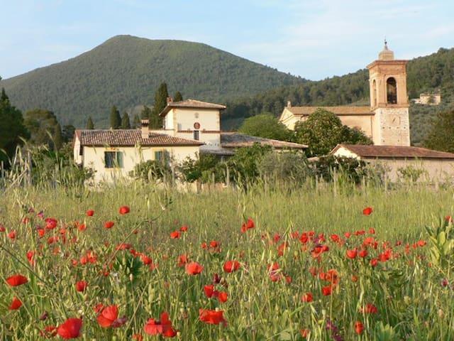 La torre colombaia - Spoleto - Lejlighed