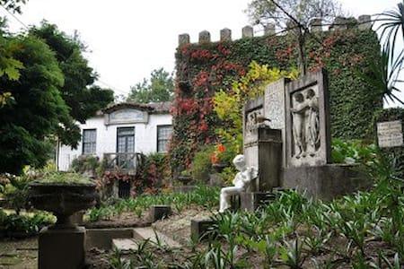Casa das Figueiras, Travanca - Travanca