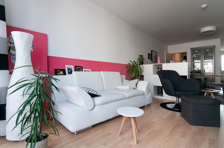 Single bed in a cosy 2 bed flat - Wien - Apartment