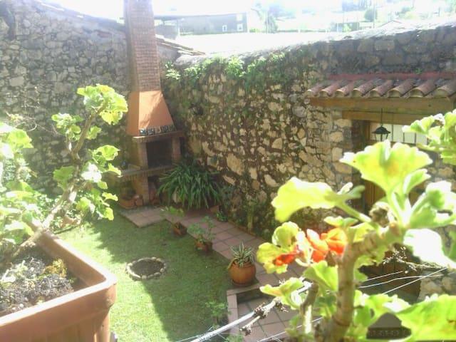 Jardín interior visto desde la terraza, apto fumadores