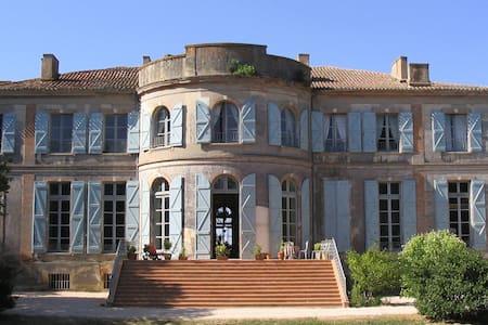 Un château en Gascogne Toulousaine - Clermont-Savès - Bed & Breakfast