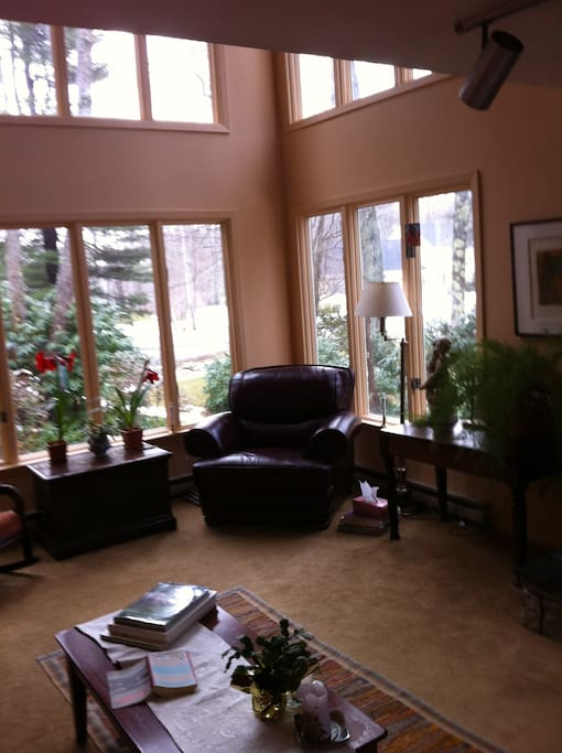 Living room in winter - usually it's greener outside those windows!