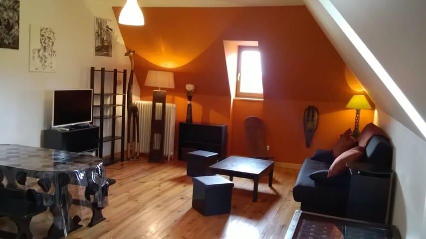 Joli appartement dans grand gîte - Tauves - Apartamento