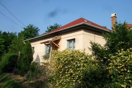 Niki Weekend House - Balatonföldvár - Dům