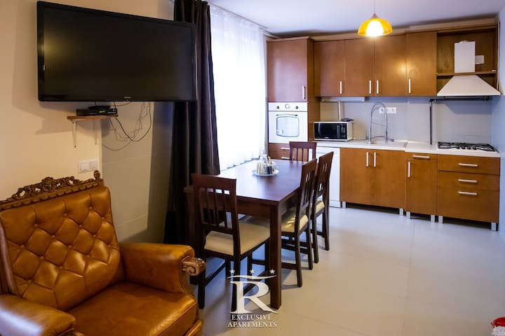 Rivulus Exclusive Apartment Baia Mare - Vintage