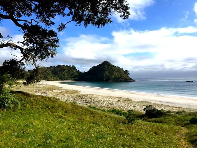 Medlands Beach Lodge GB Island - Great Barrier Island - Aamiaismajoitus