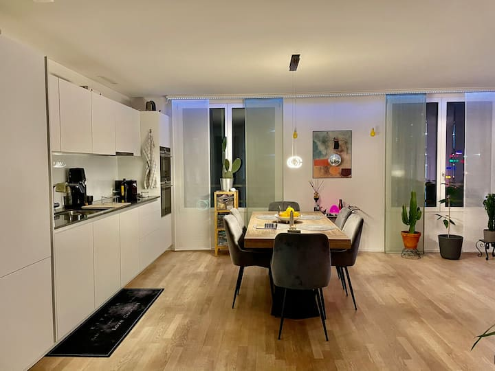 Beautiful Apartment with a Terasse in Zurich West