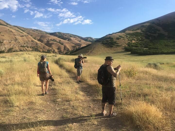 Hiking Above Salt Lake