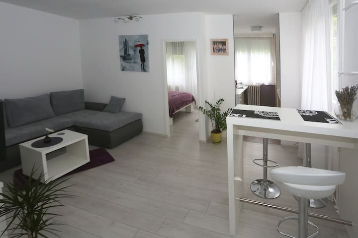 Modern new apartment in Osijek - Osijek - Departamento