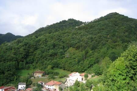 NATUR pur im Naturpark REDES,  Asturien