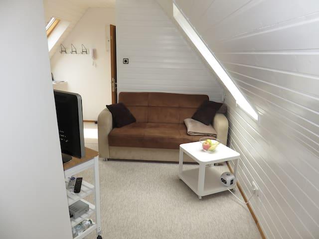 Cosy Micro Apartment
