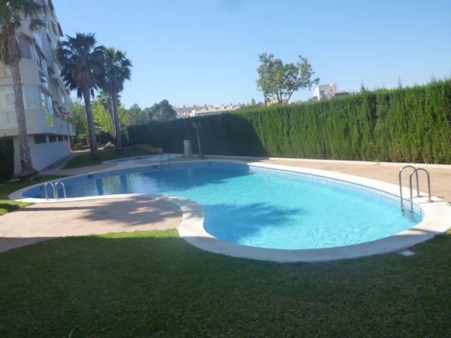 Playa de san juan los lagos apartamentos en alquiler en alicante comunidad valenciana espa a - Apartamentos alicante alquiler ...