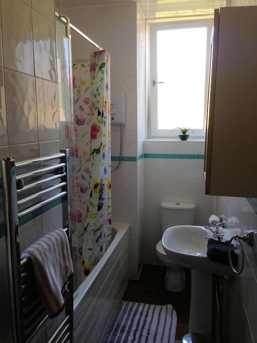 Bathroom - Full bath, shower, sink and toilet.