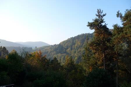 Entre montagnes et vignes - Lapoutroie