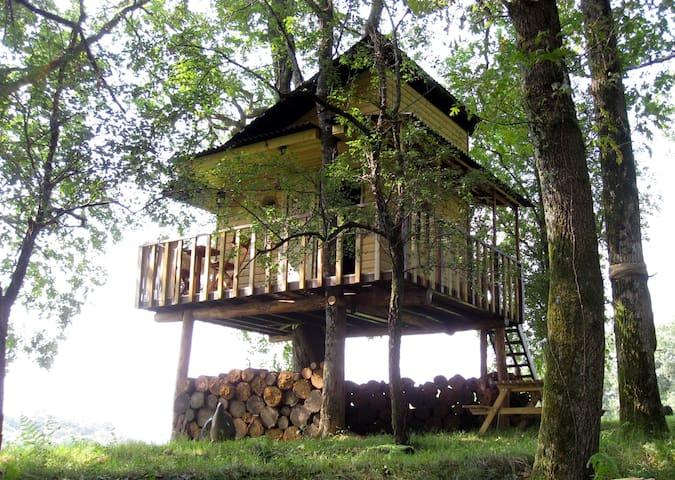 Nuit insolite dormir dans un arbre - Labatut, Landes - Mökki
