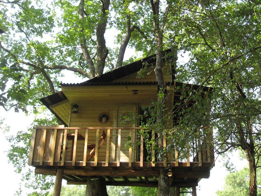 nuit insolite dormir dans un arbre cabanes louer labatut landes aquitaine france. Black Bedroom Furniture Sets. Home Design Ideas