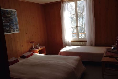 Schulhaus Gimmelwald (3 beds) - Gimmelwald