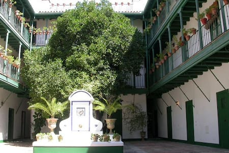 Historic city center apartment WIFI - Seville - Apartment