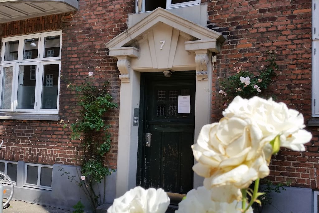 The front door with plenty of lovely roses