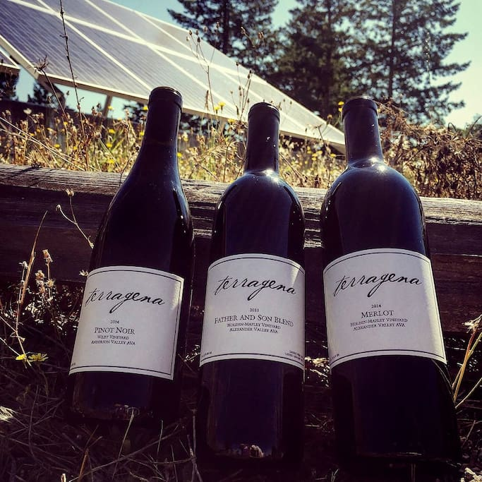 Off-grid solar power - works like a normal house, but so much greener.  Delicious wine, too!