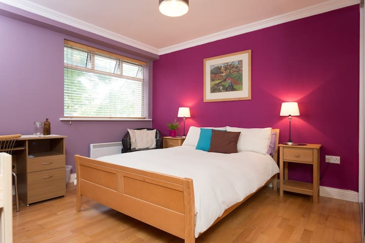Best of Both: Stroll to City or Sea - Galway - Apartament