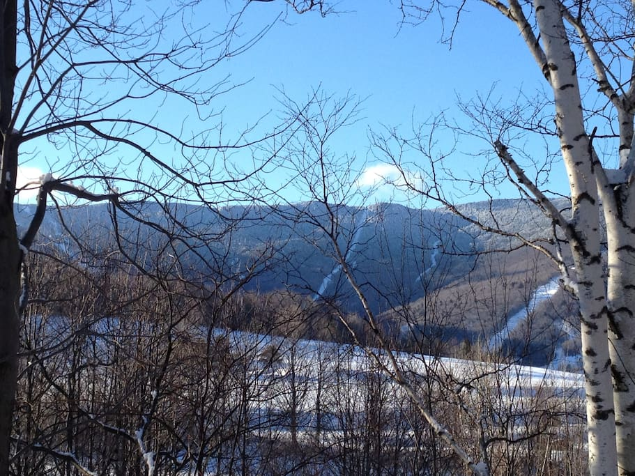 The ski slopes are right around the corner - you can even see what conditions look like!
