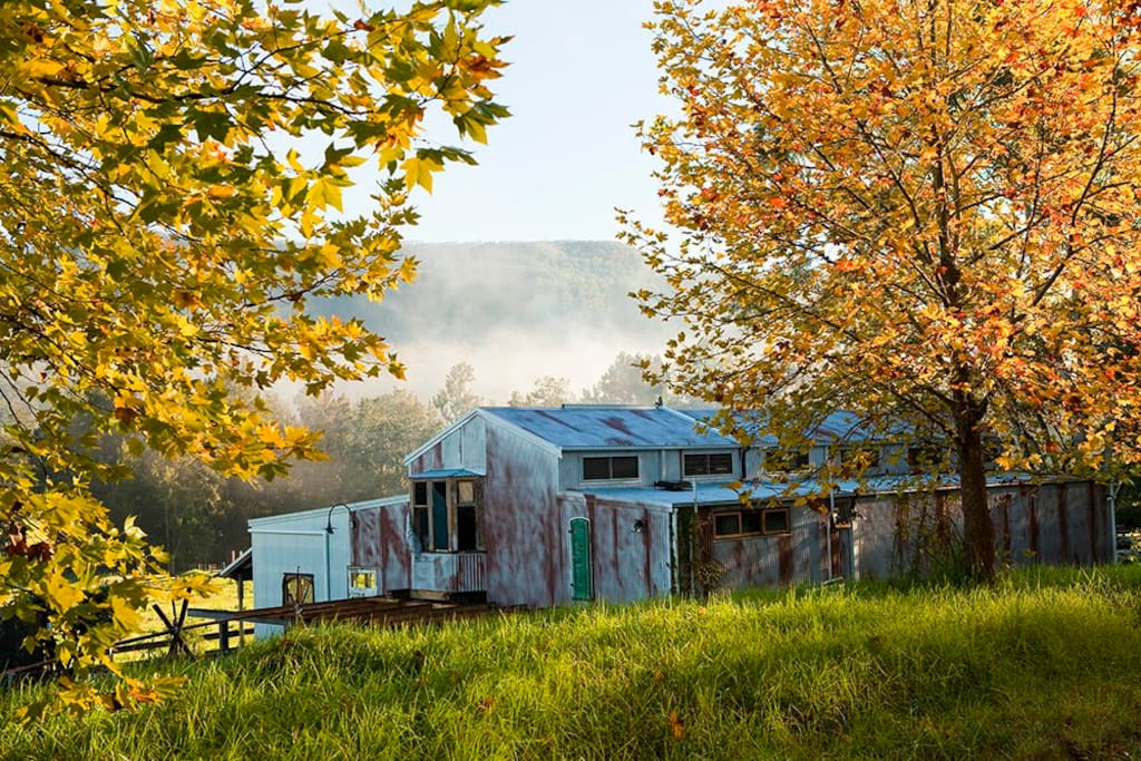 View of The Shed from the quiet country road that leads you to the property