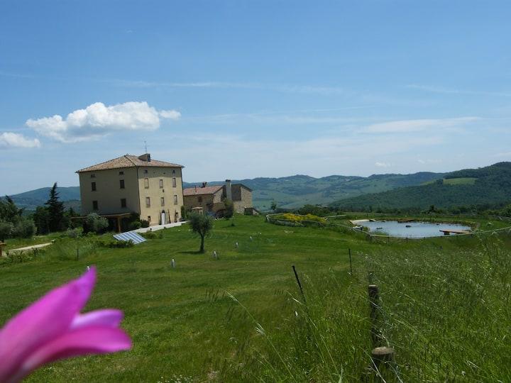 The Red Loft, Montecastelli Pisano, Tuscany