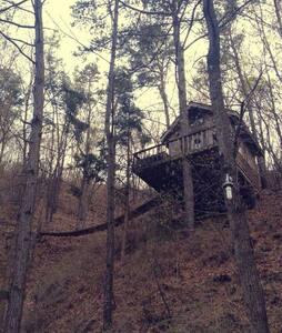 가장 특별한 집 트리하우스. 숲속에서 누리는 나와 가족만의 시간 - Pyeongtaek-si - Hus i træerne