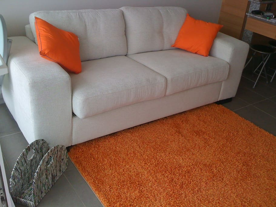 Brand-new comfortable sofa in living room area