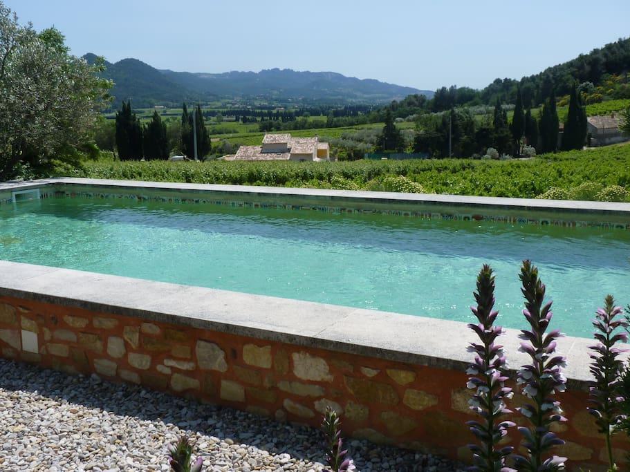 La piscine, les vignes, les dentelles