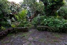 EL JARDÍN tiene una gran variedad de flores y plantas. Esta pequeña terraza se encuentra a la salida del estudio independiente.