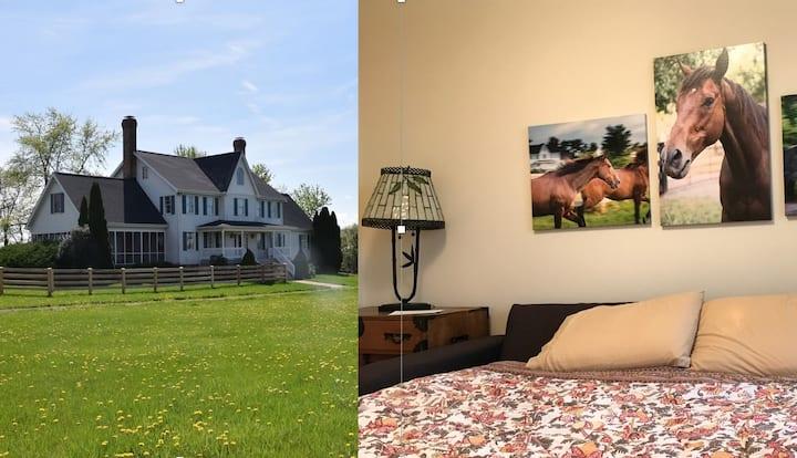 Alysoun's Rescue Ranch - Charlie Room