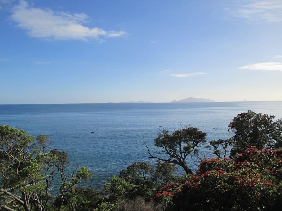 Panoramic views of Bream Bay