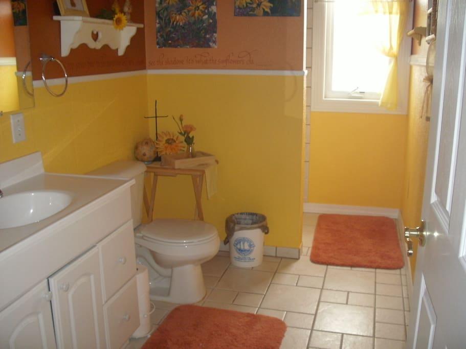 Bathroom has shower.