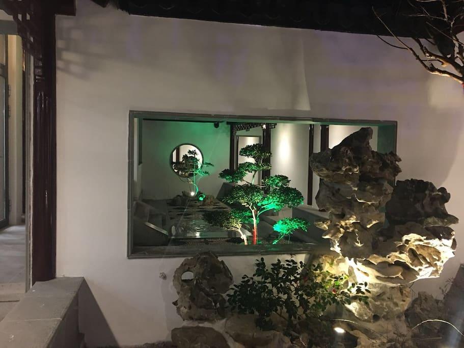 夜间西苑太湖石
